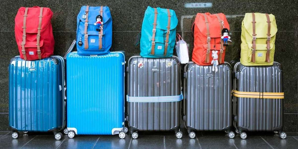 The Best Travel Gear: Luggage, Accessories, and More