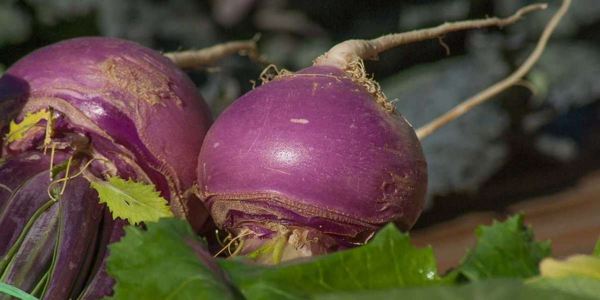 The Ultimate Guide to Turnip Nutrition