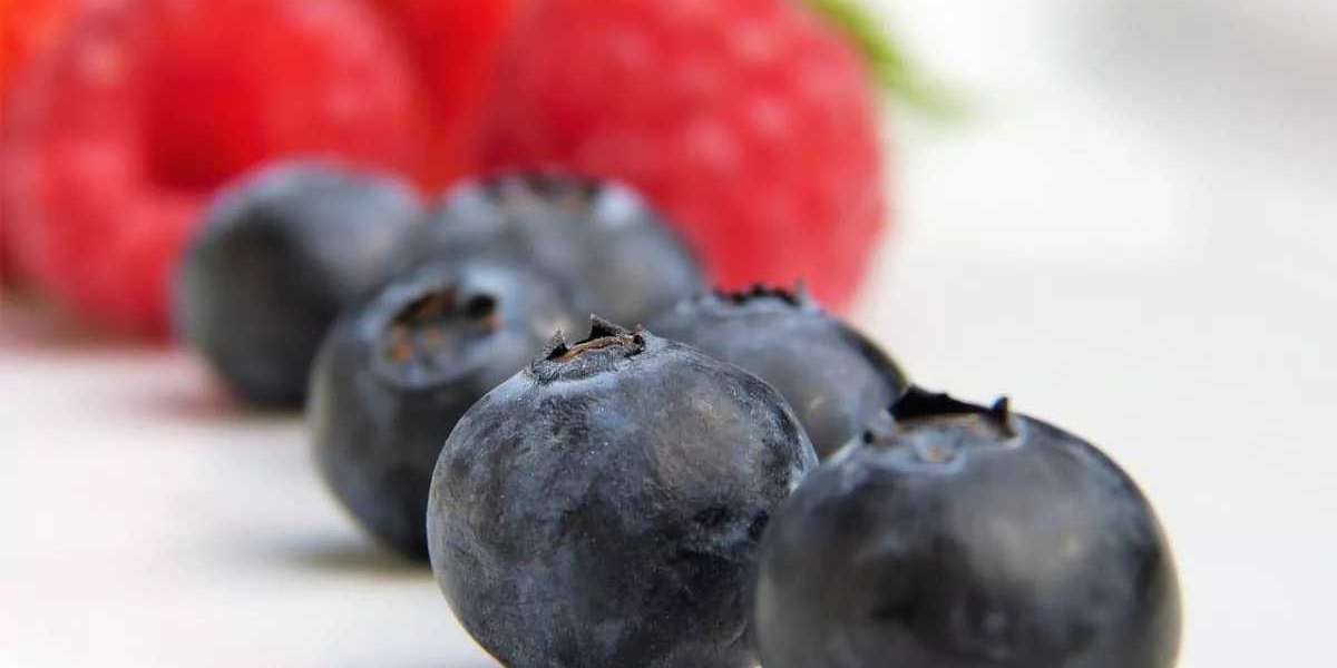 Foods That Help Boost The Immune System