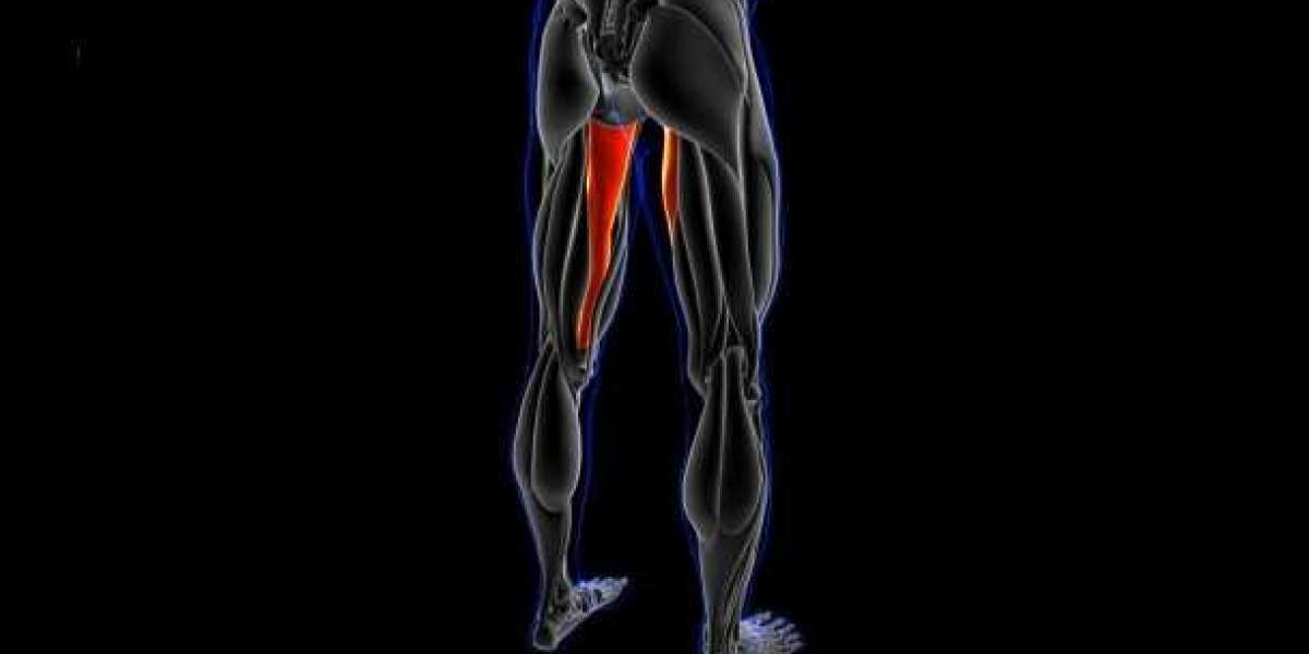 STOP NEGLECTING YOUR ABDUCTOR & ADDUCTOR MUSCLES