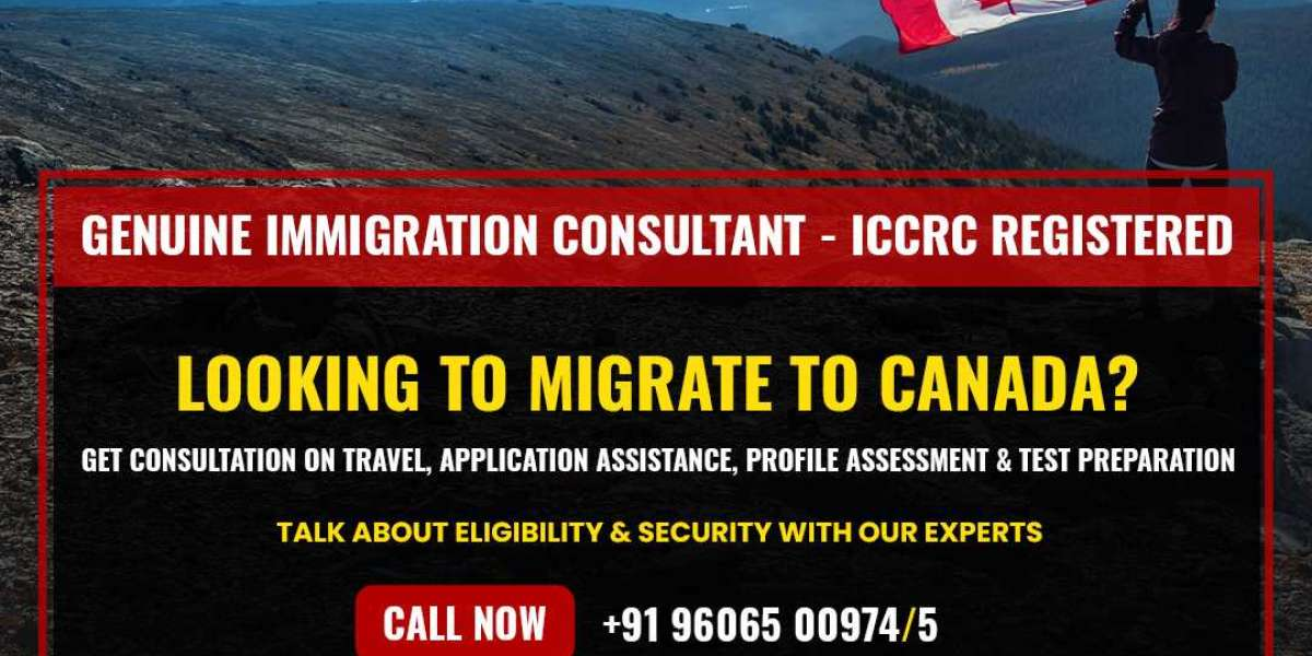 How To Find Best Immigration Consultants in Bangalore?