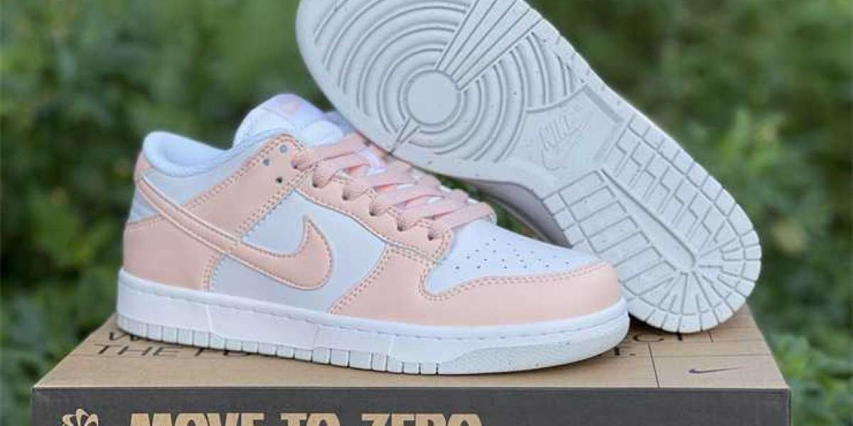 2021 Brand New Nike Dunk Low Move To Zero DD1873-100