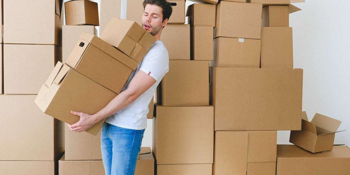 Importance of Insurance in Packing and Shifting of a House
